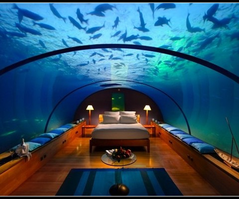 Ready to spend your honeymoon under the sea ?
